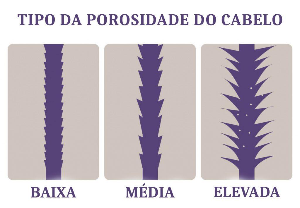 Tipos de porosidade do cabelo